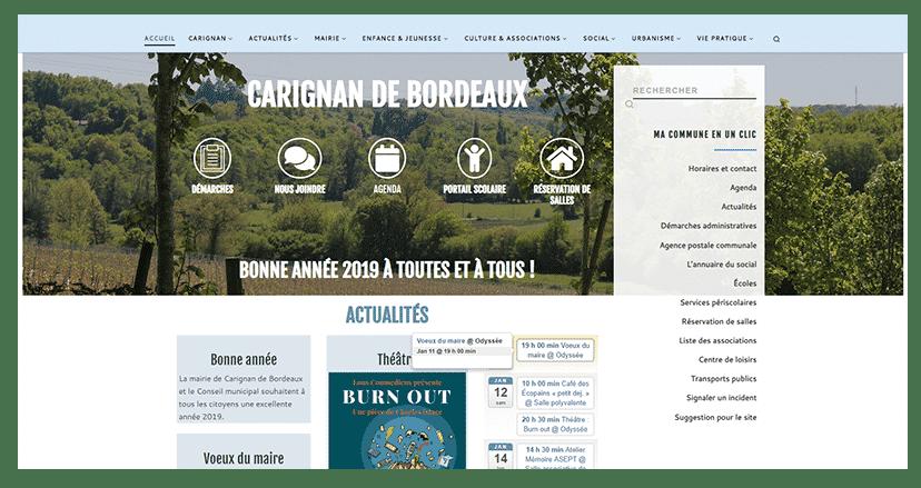 Carignan de Bordeaux