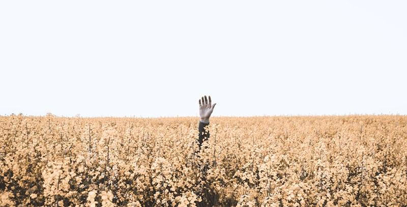 Image d'un homme perdu dans un champs : réaliser un cahier des charges permet de mieux préparer un projet